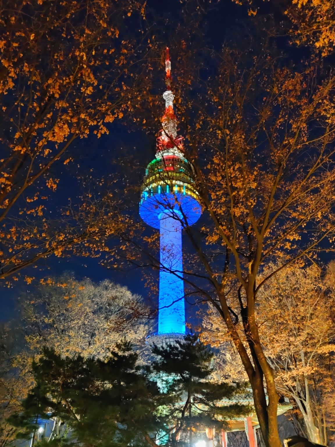 Photo of Namsan Tower By Sushmita Sinha