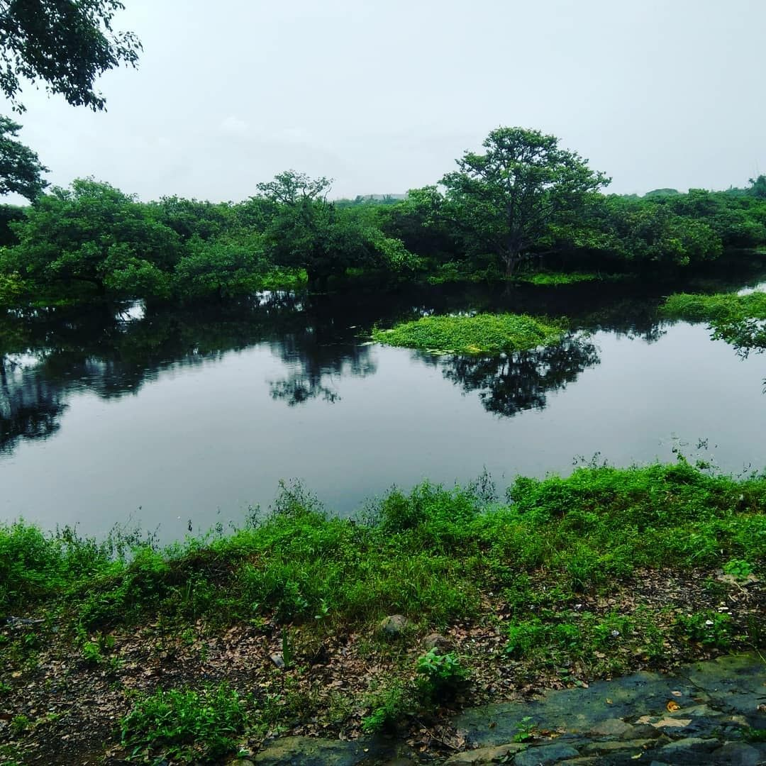 Photo of Vedanthangal Bird Sanctuary By Jainil Gosalia