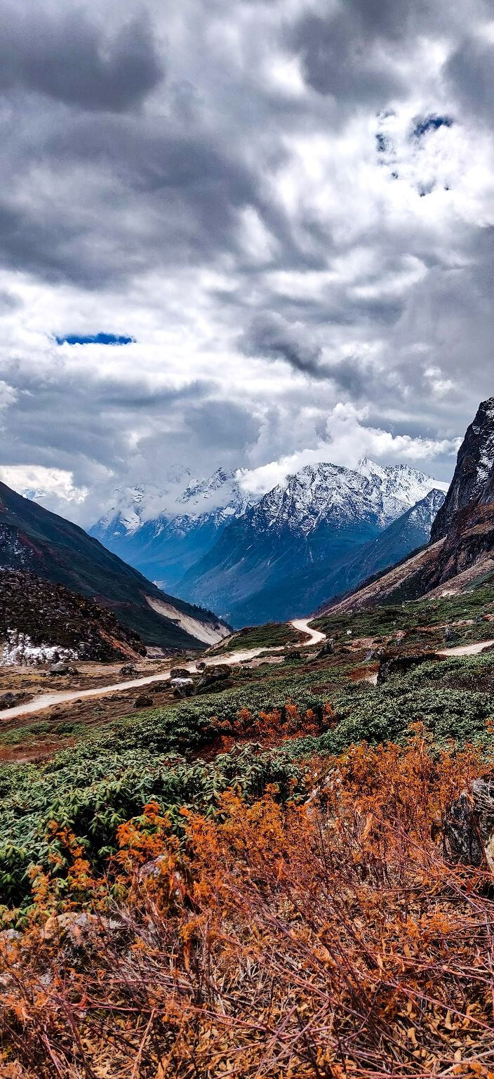 Photo of Yumthang By Umith