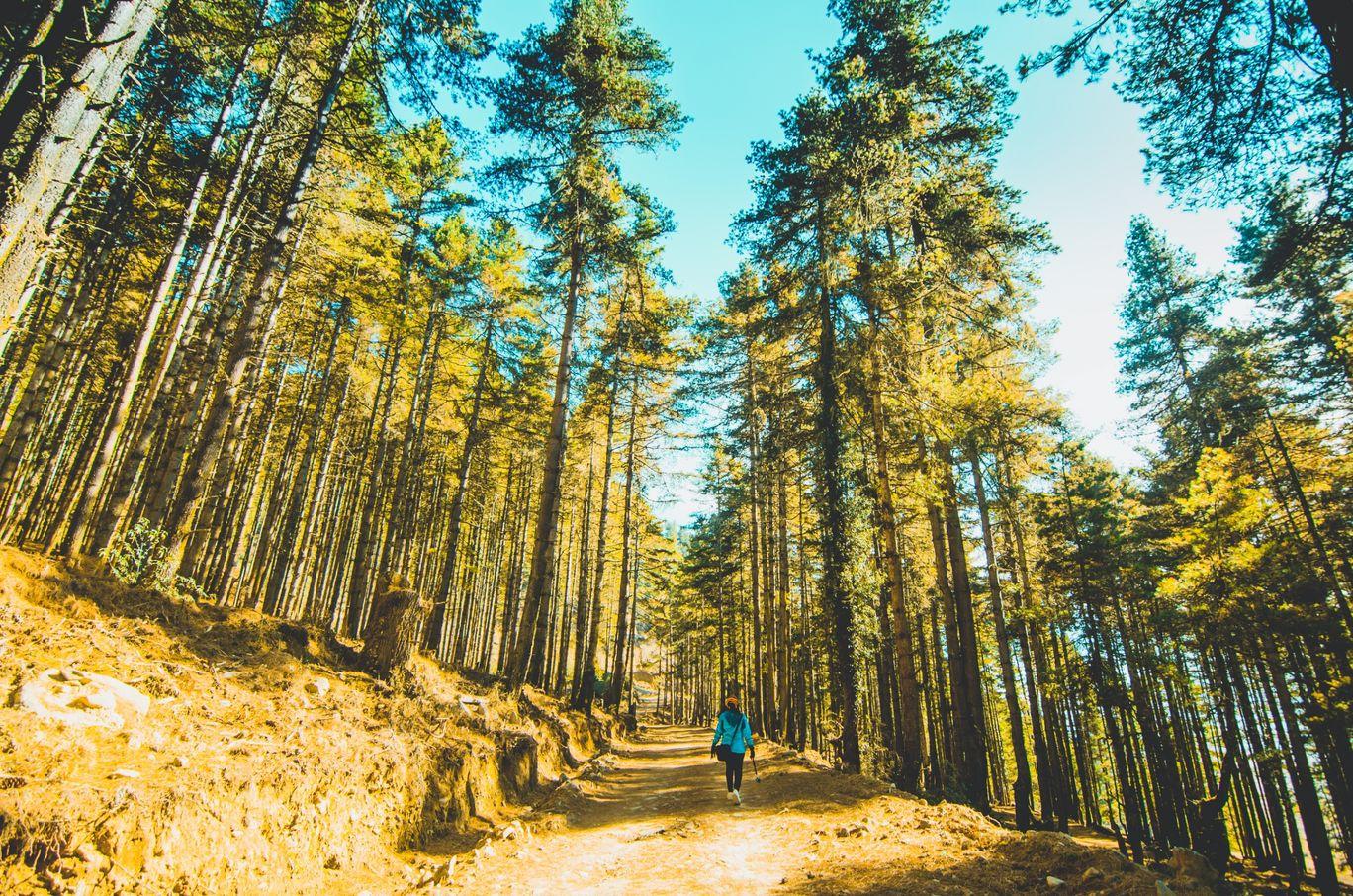 Photo of Bhutan By Sandeep Mendel
