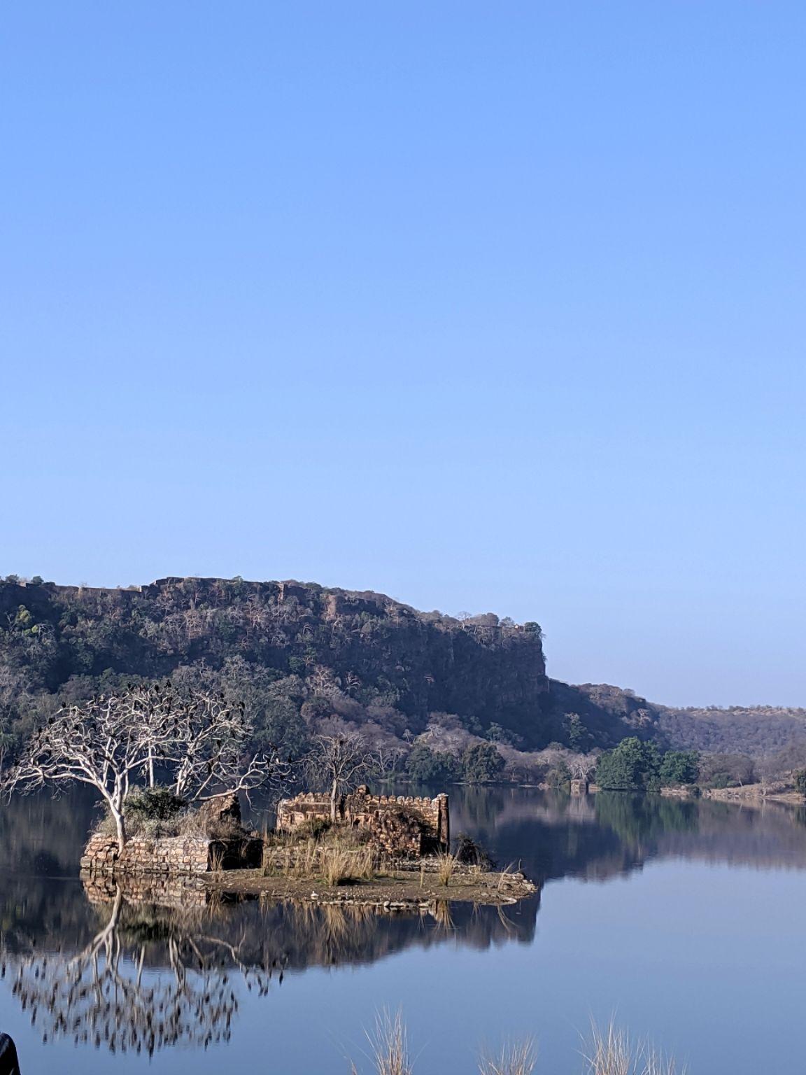 Photo of Ranthambore National Park By Smridhi Aggarwal