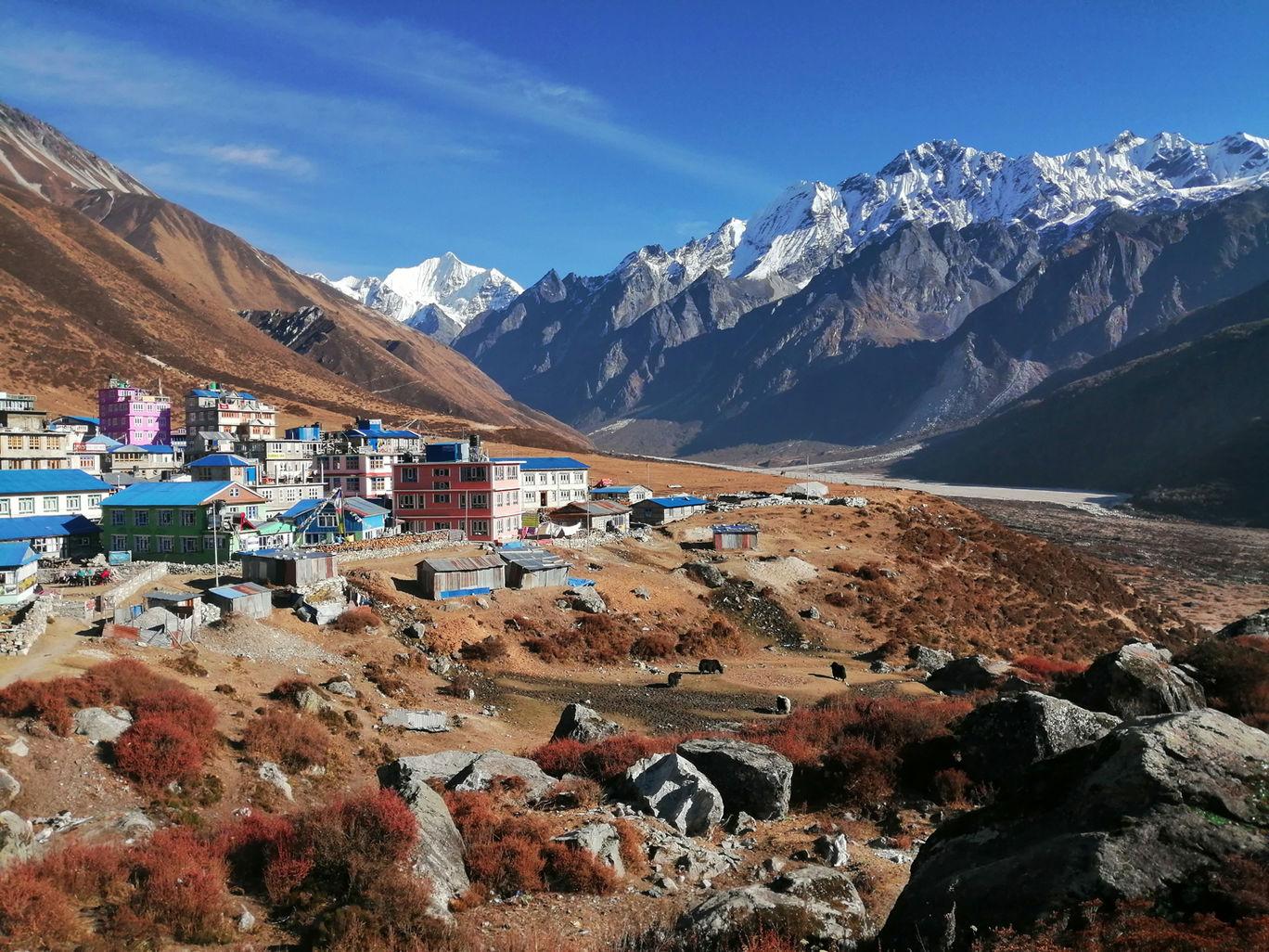 Photo of Langtang By Nepal Trek Hub