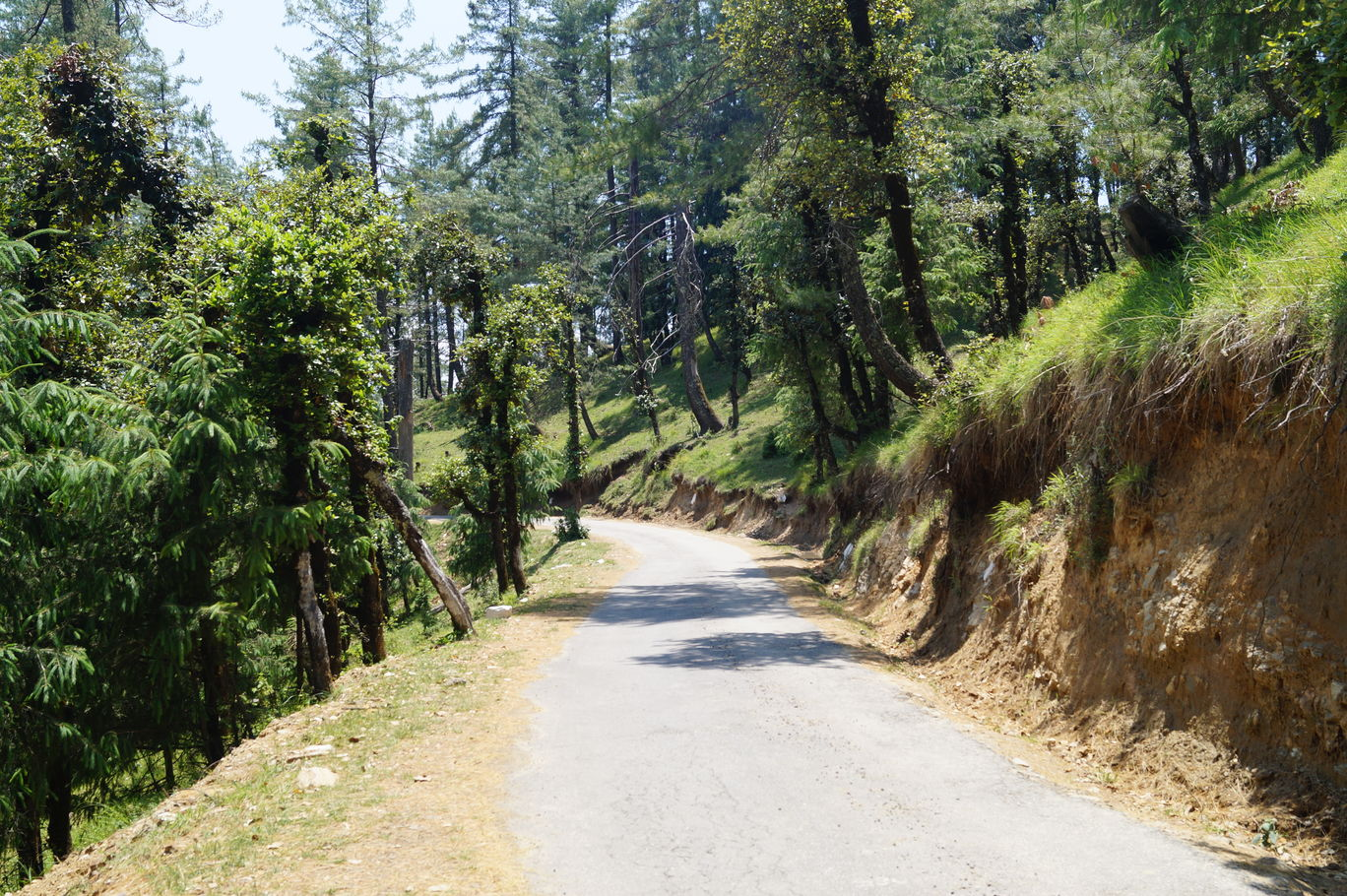 Photo of Himachal Pradesh By Karishma KS