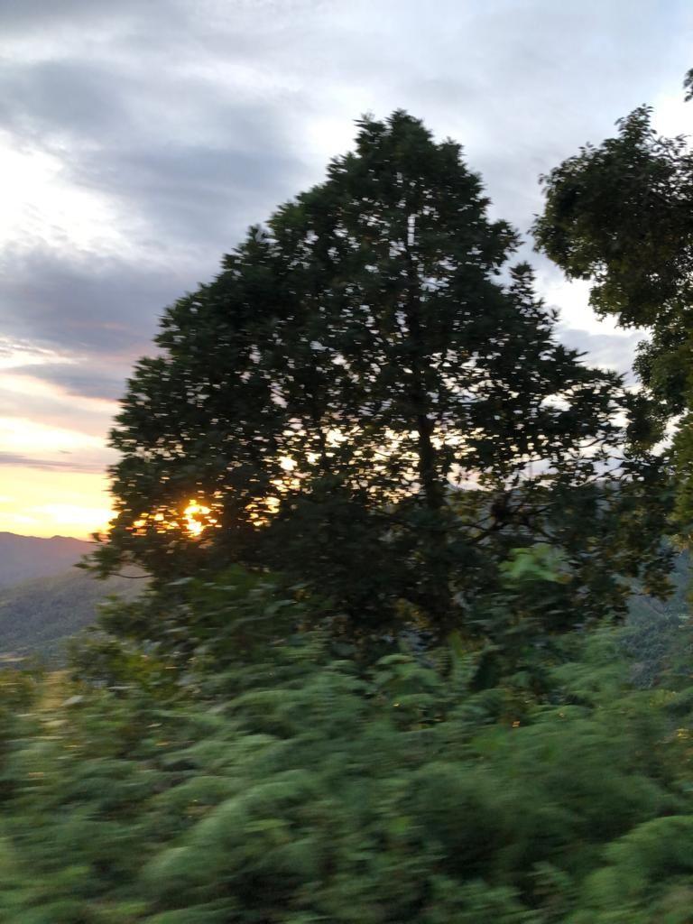Photo of Kodaikanal hill station By thasneem