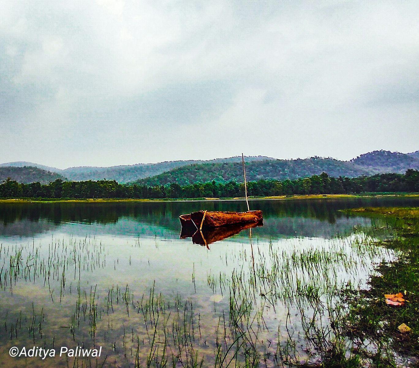 Photo of Wari By ADITYA PALIWAL