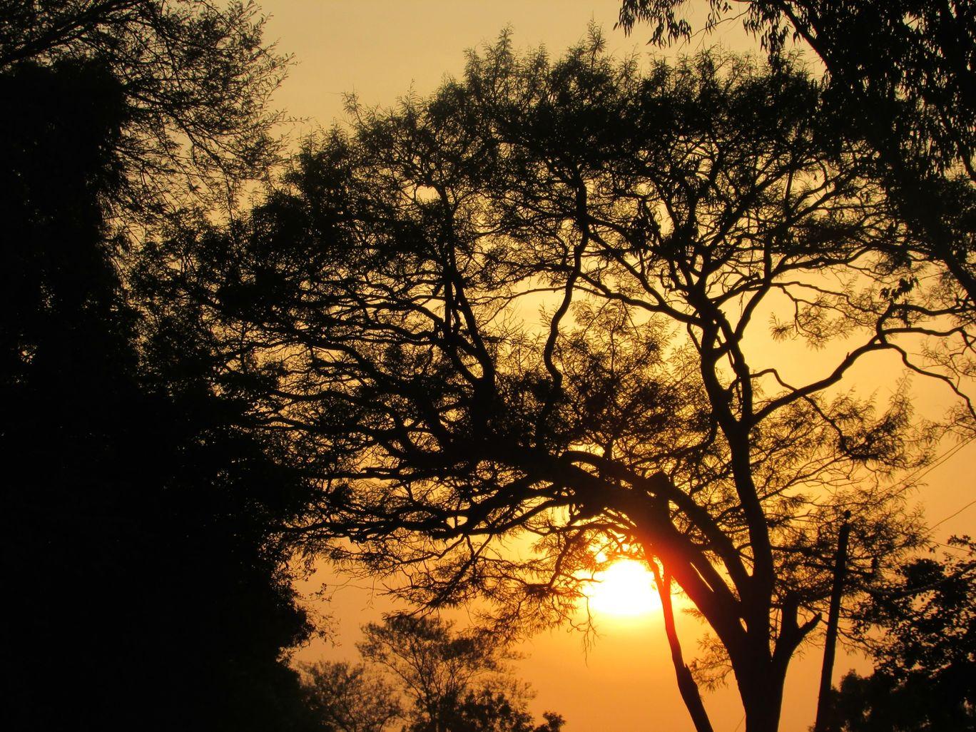 Photo of Savandurga Trek Starting Point By Kruthika gowda