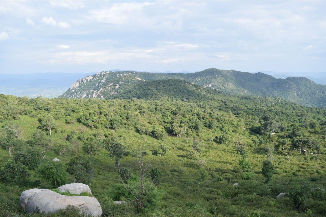 Photo of Yelagiri Hills By Binesh mp