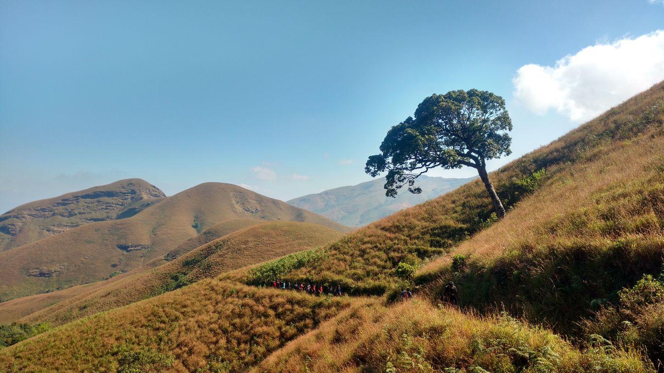 Photo of Western Ghats By Ranjit Periyasami