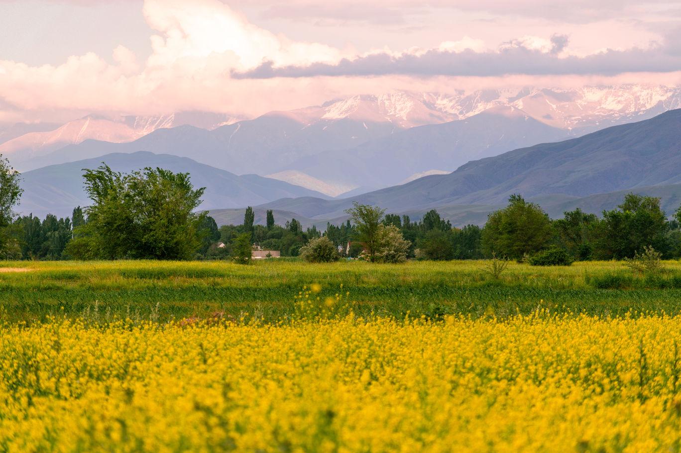 Photo of Kyrgyzstan By Rachita Saxena