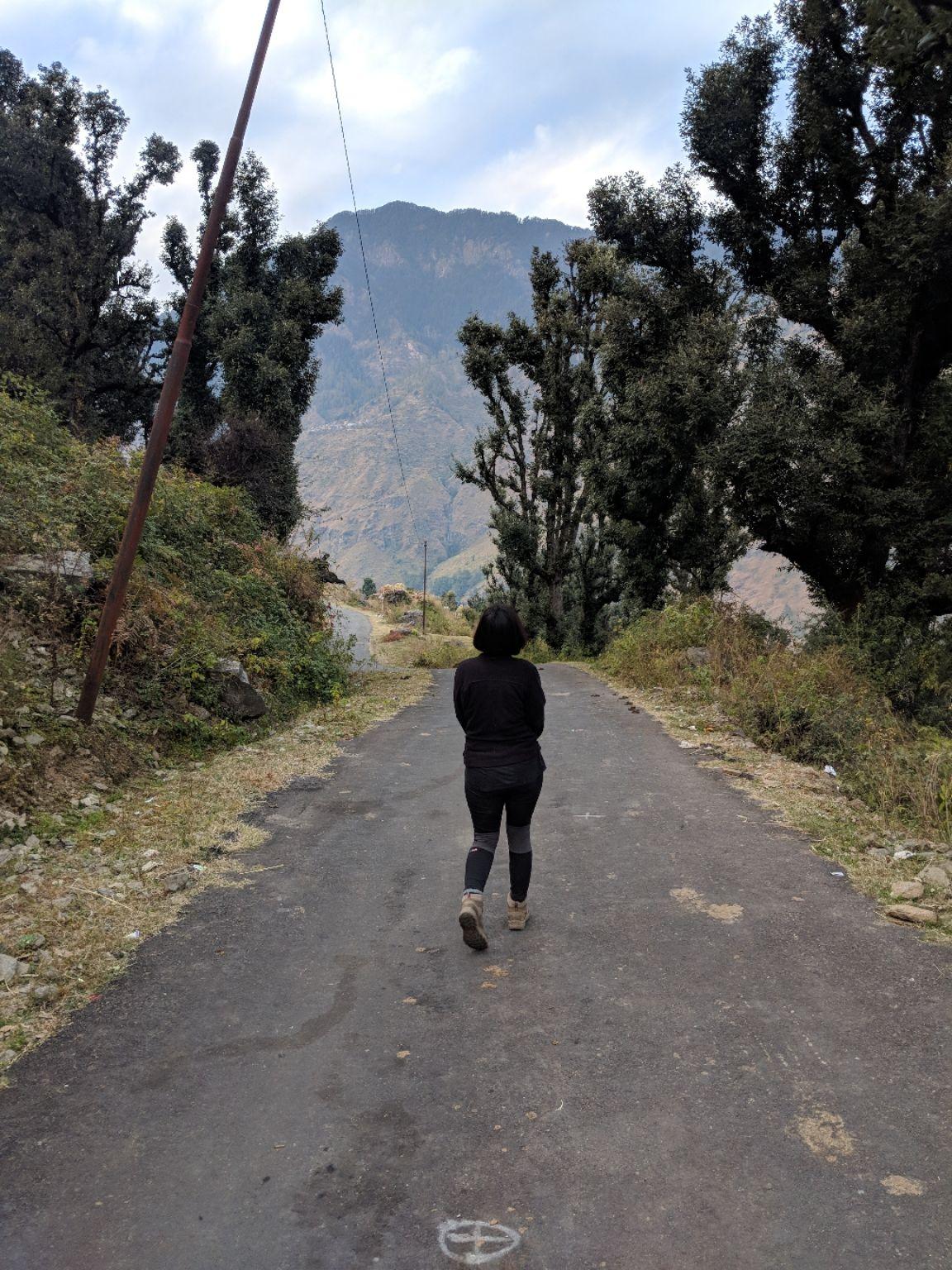 Photo of Himalayas By Damini Arora