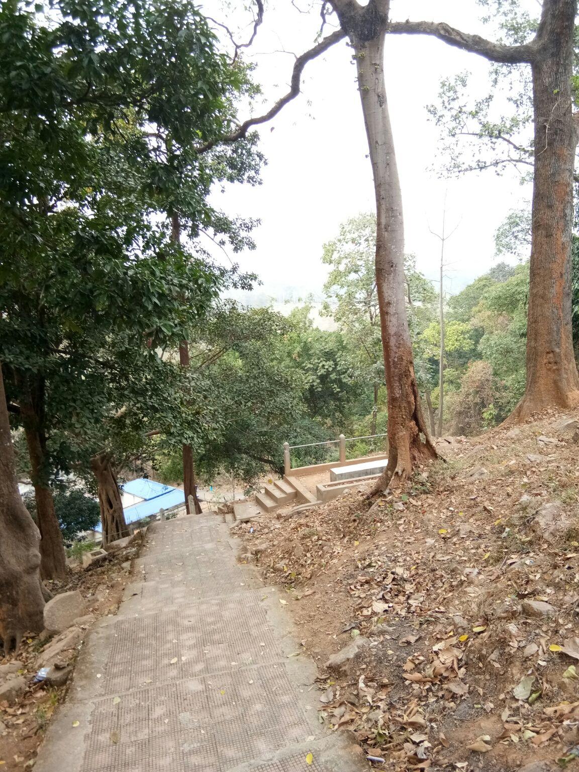 Photo of Deopahar Archaeological Site By Ashok Kumar