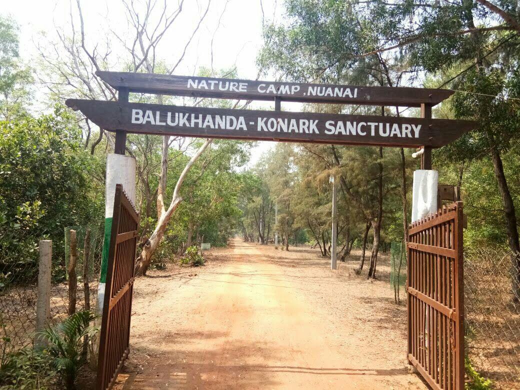 Photo of Nature Camp Nuanai By Ashok Kumar