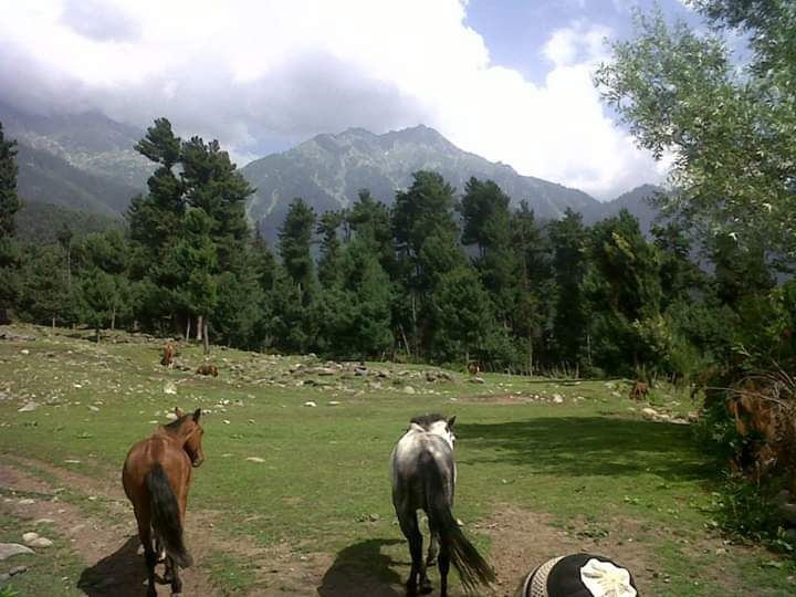 Photo of Pahalgam By Wanderlust Ashok