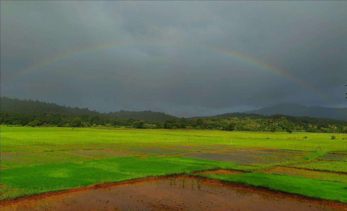 Photo of Anshi National Park By Naresh N