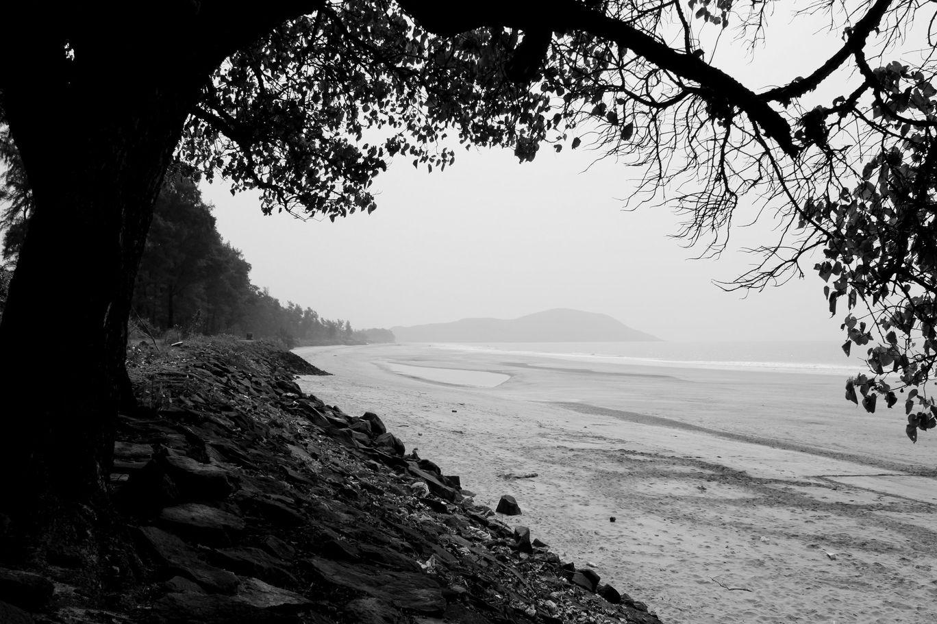 Photo of Srivardhan Beach By Rohit Ghodke
