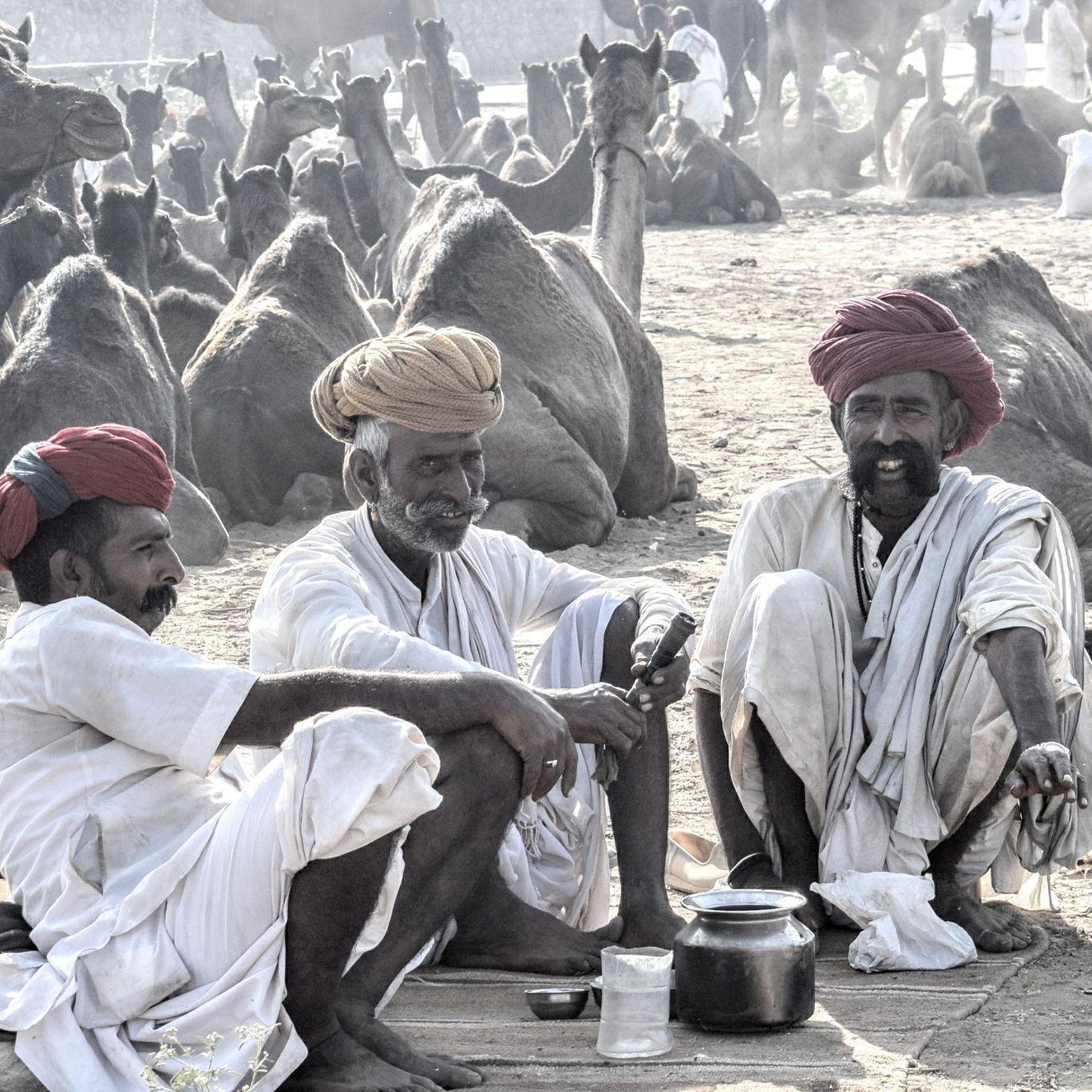 Photo of Pushkar Fair Ground By abhishek goyal
