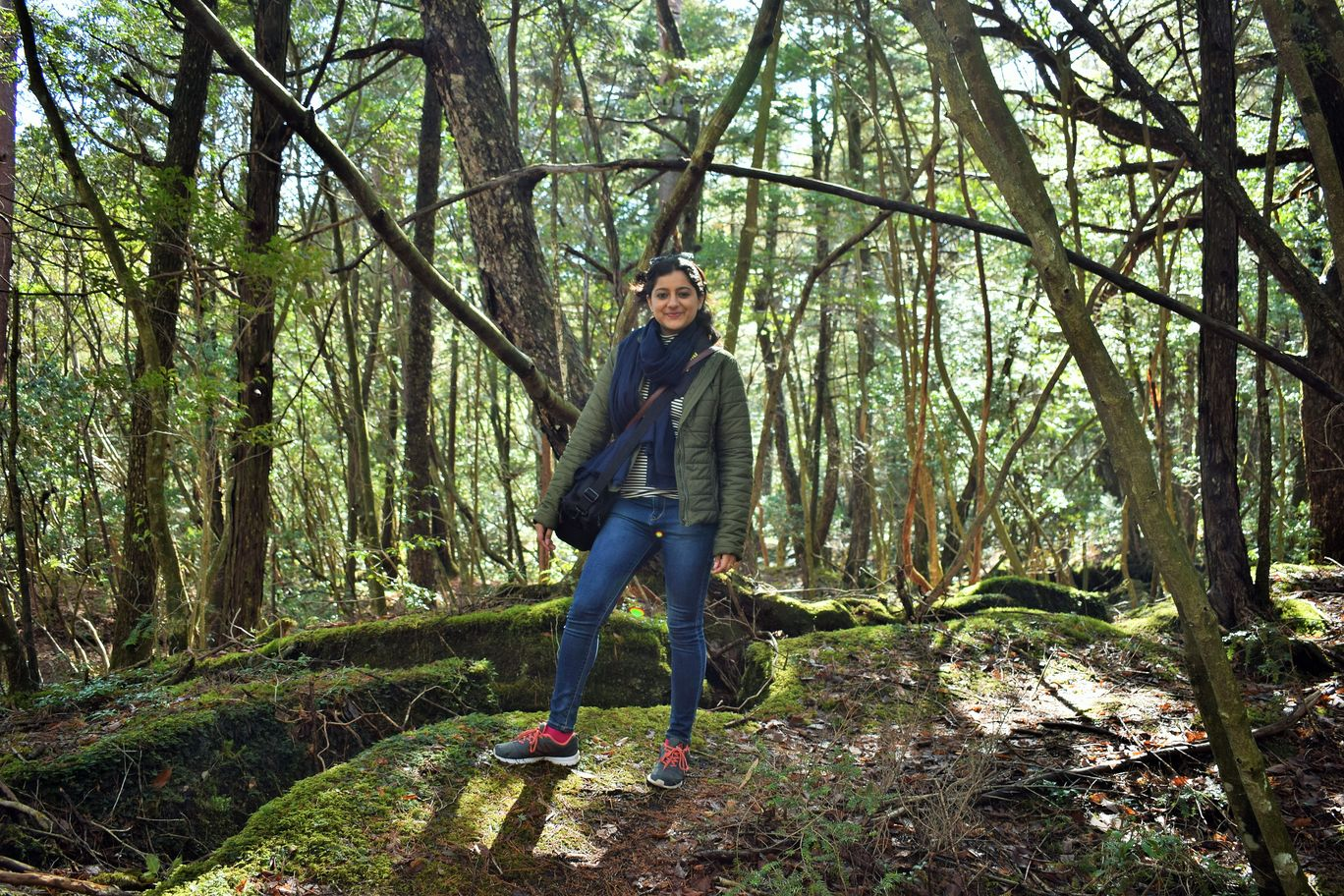 Photo of Aokigahara Forest By Shruti Sharma