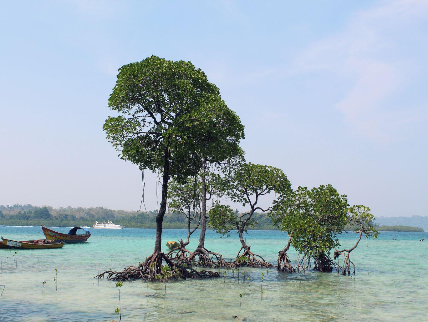 Photo of Andaman Islands By Tarun Nayyar