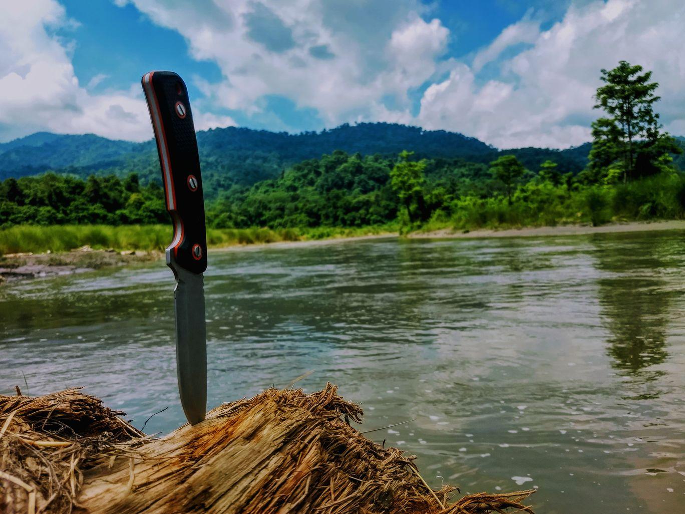 Photo of Manas National Park By Nirzher Agarwal