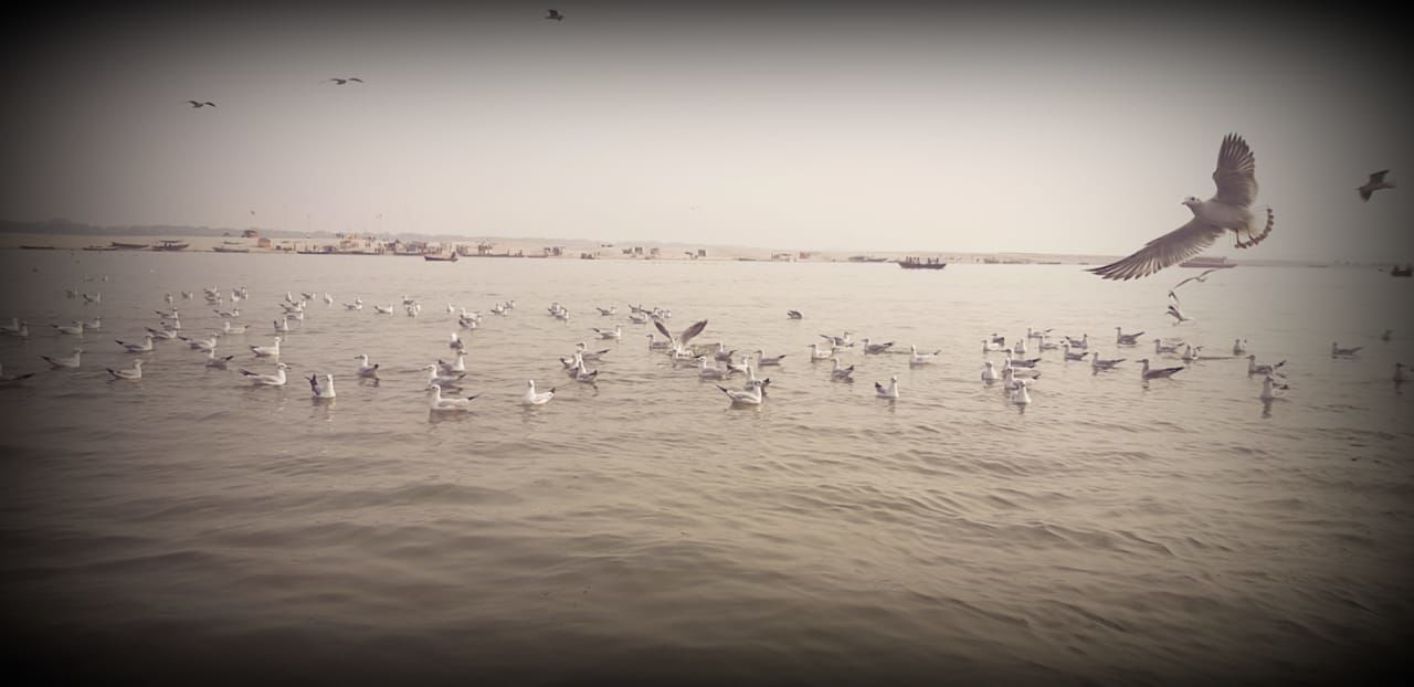 Photo of Varanasi By Rishabh Goel