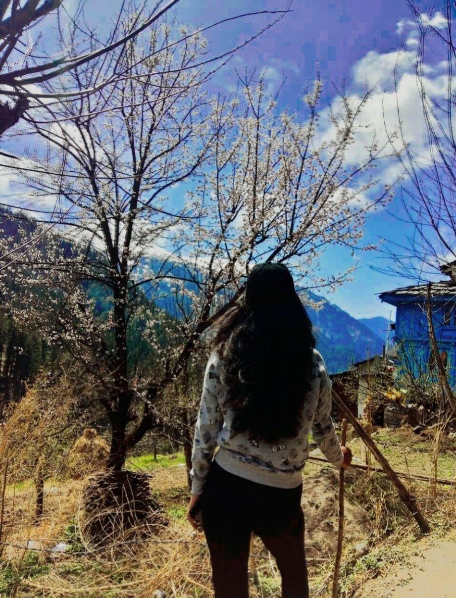 Photo of Parvati Valley By Shivani Panwar