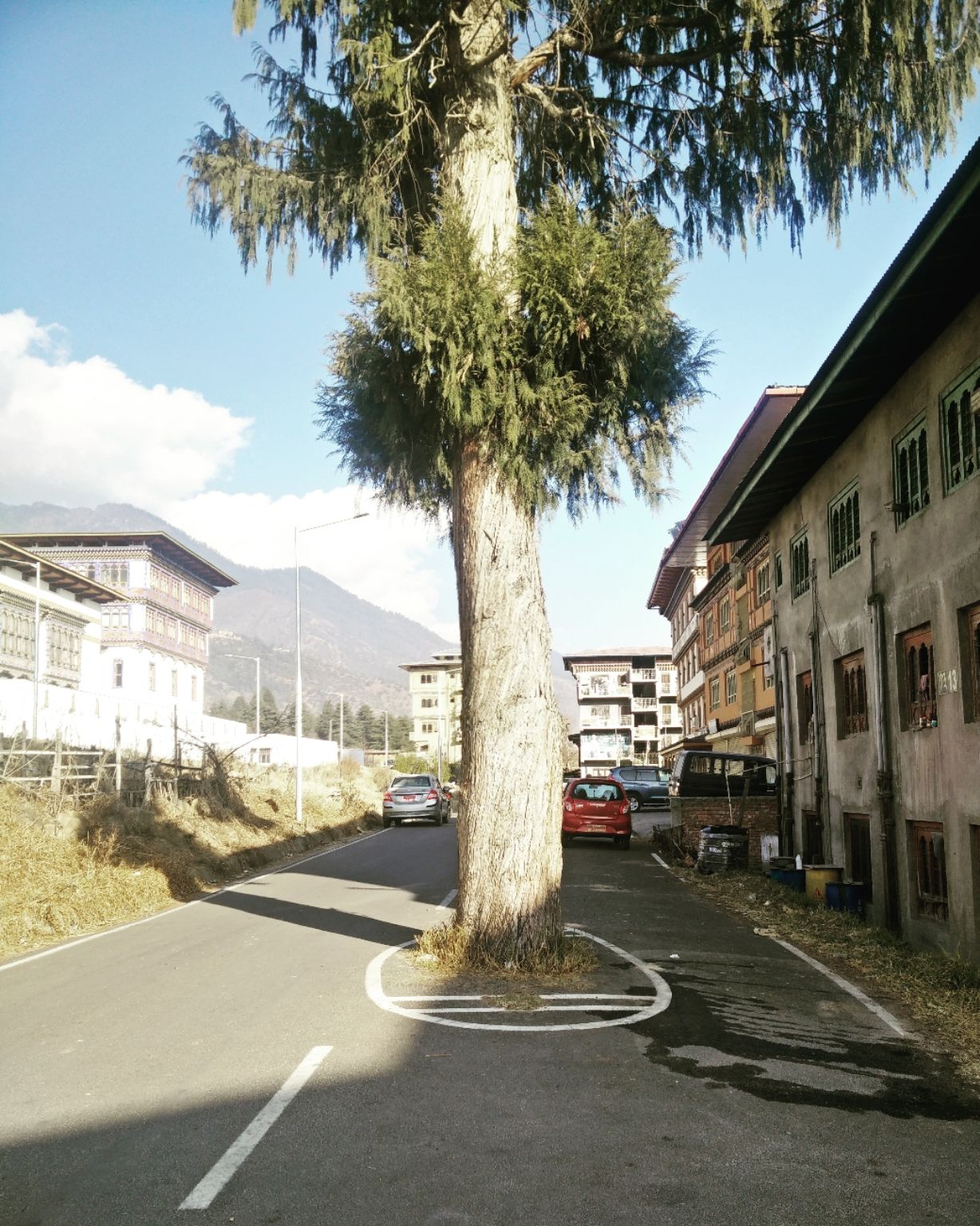 Photo of Thimphu By Ruchi