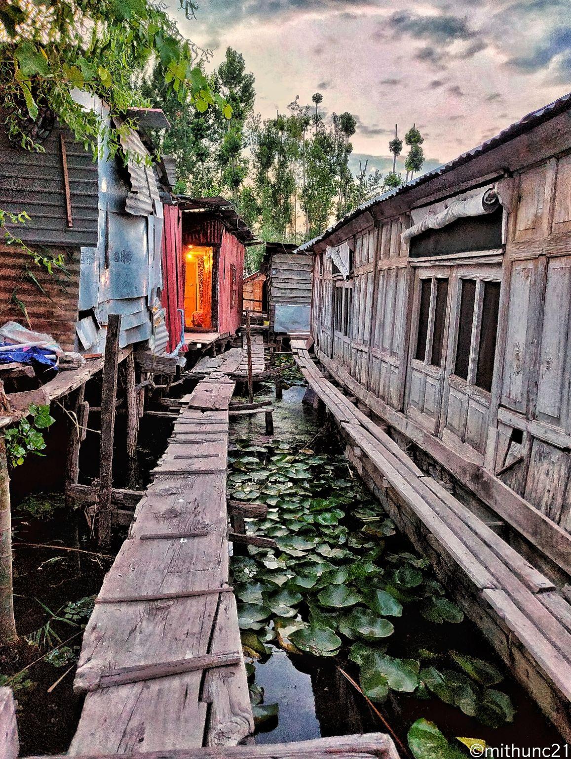 Photo of Dal Lake By Mithun Chandravanshi