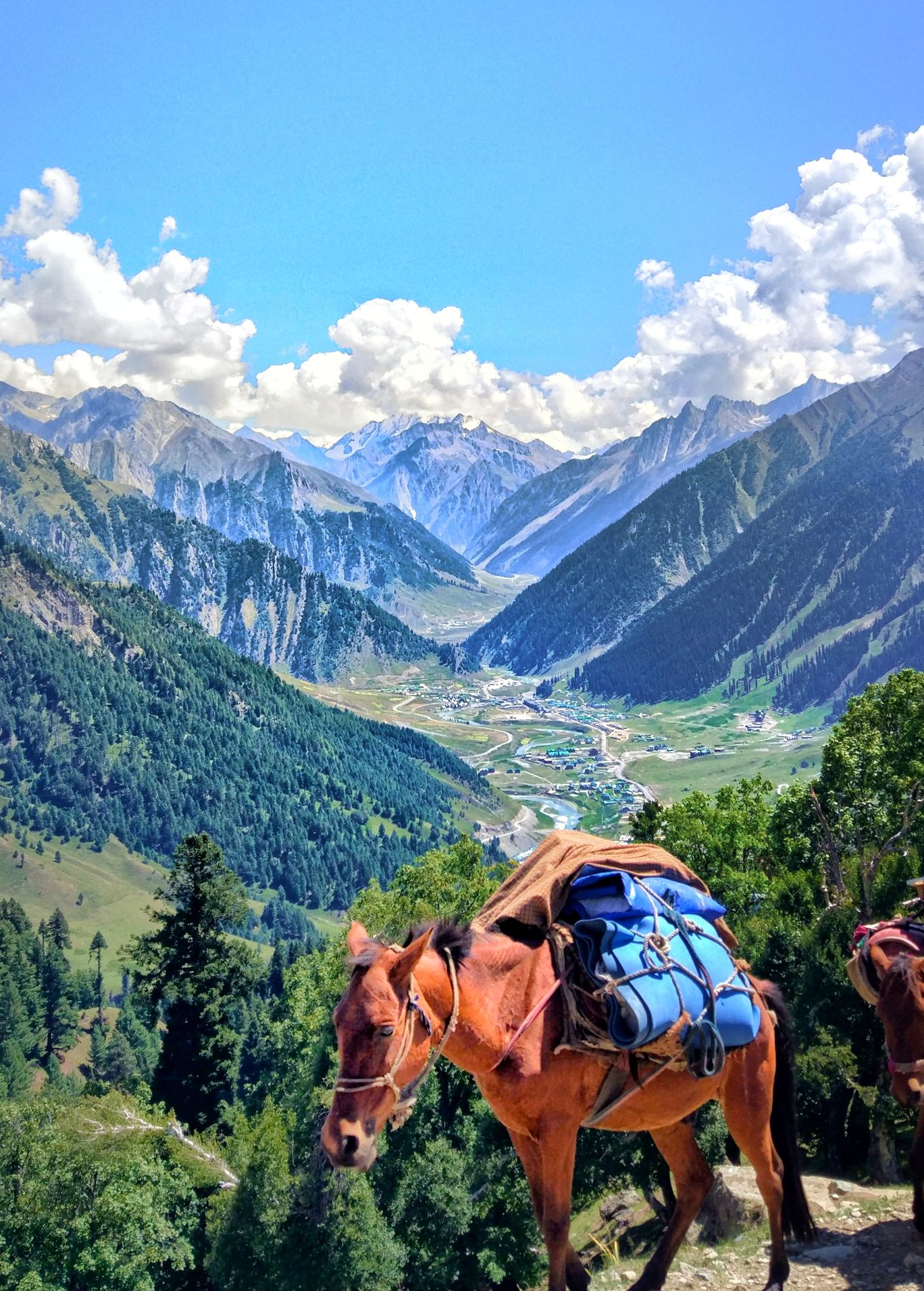 Photo of Kashmir Great Lakes Trek By Sonali Singh