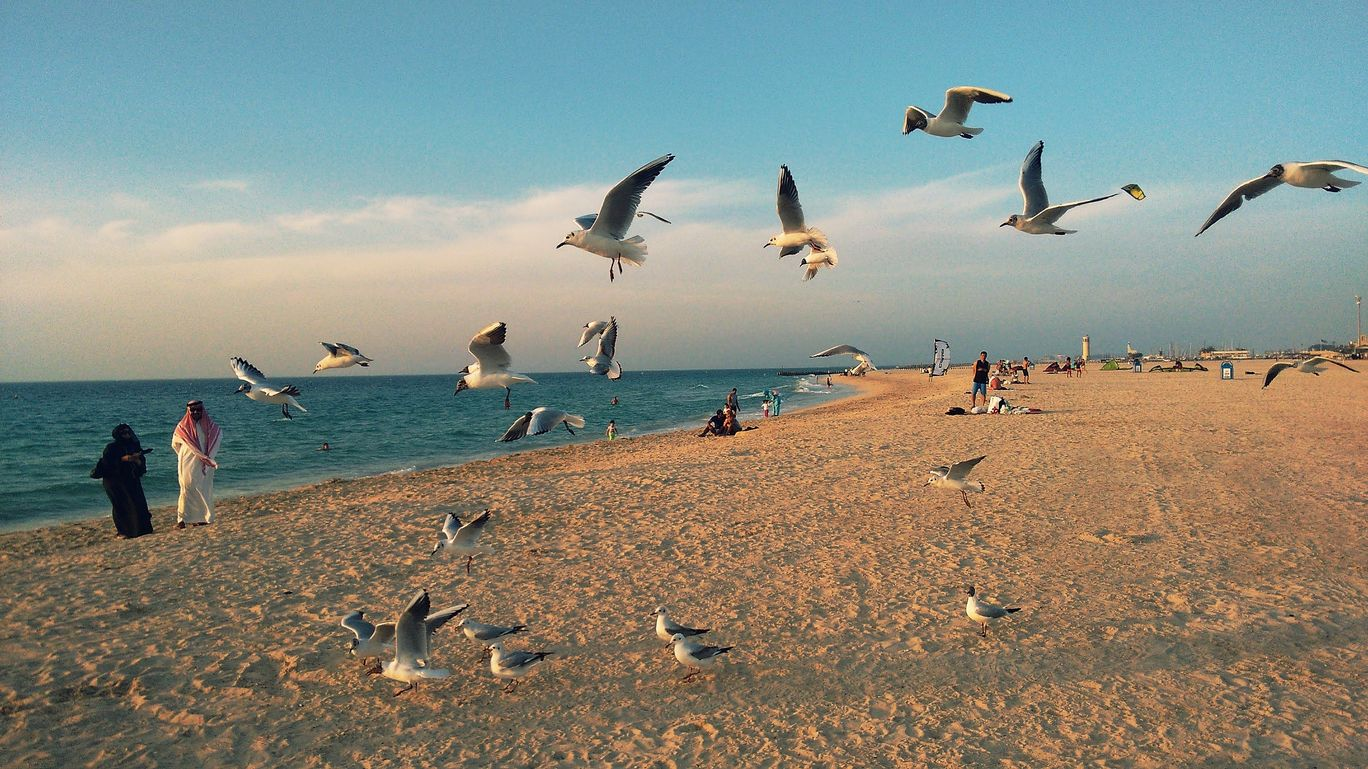 Photo of Jumeirah Beach - Dubai - United Arab Emirates By Brijesh Birua