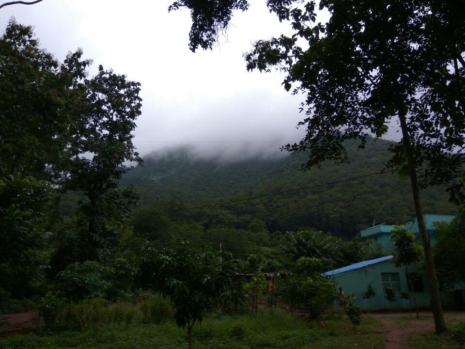 Photo of Rajahmundry - Bhadrachalam Highway By Rajesh Cn