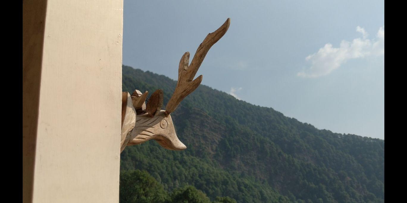 Photo of Pangot, Uttarakhand By Raman Oberoi