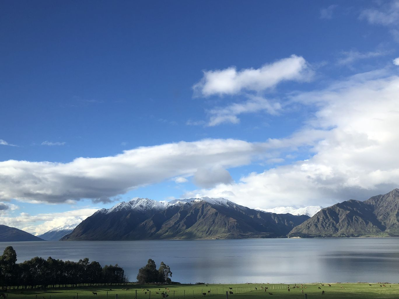 Photo of New Zealand By kashmira mhatre