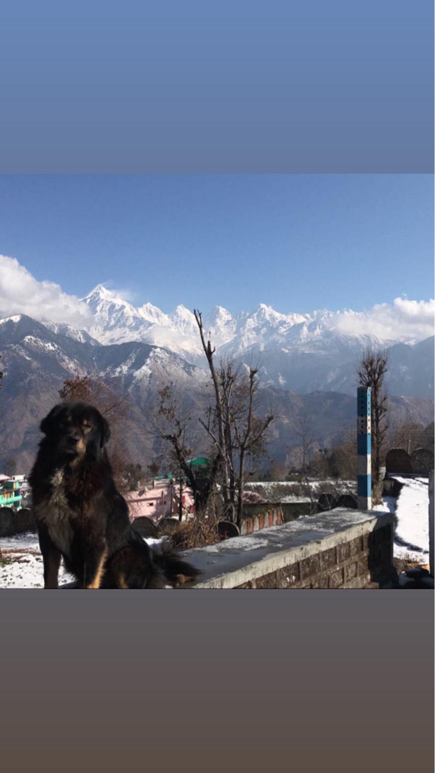 Photo of Winter Trip To Munsiyari, Uttarakhand By Nityananda Mukherjee
