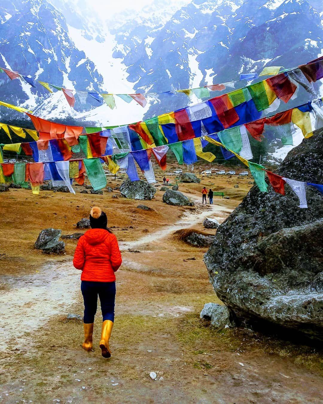 Photo of Yumthang Valley Natural Reserve By Nivedita Singh