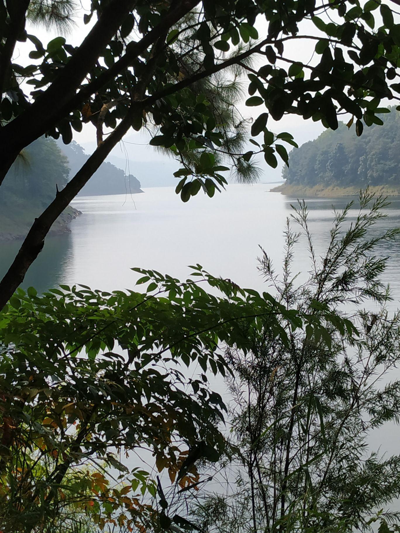 Photo of Shillong By Avish Rawal