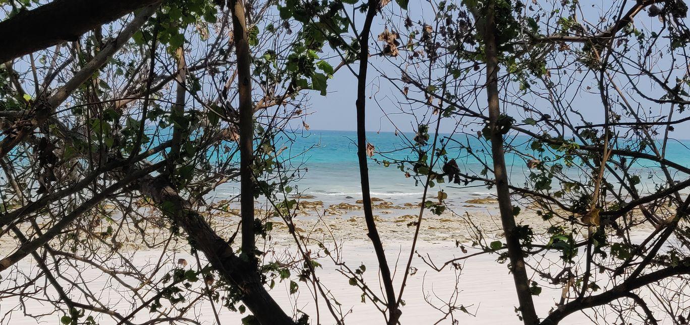 Photo of Kala Pathar Beach By Lalima Gupta