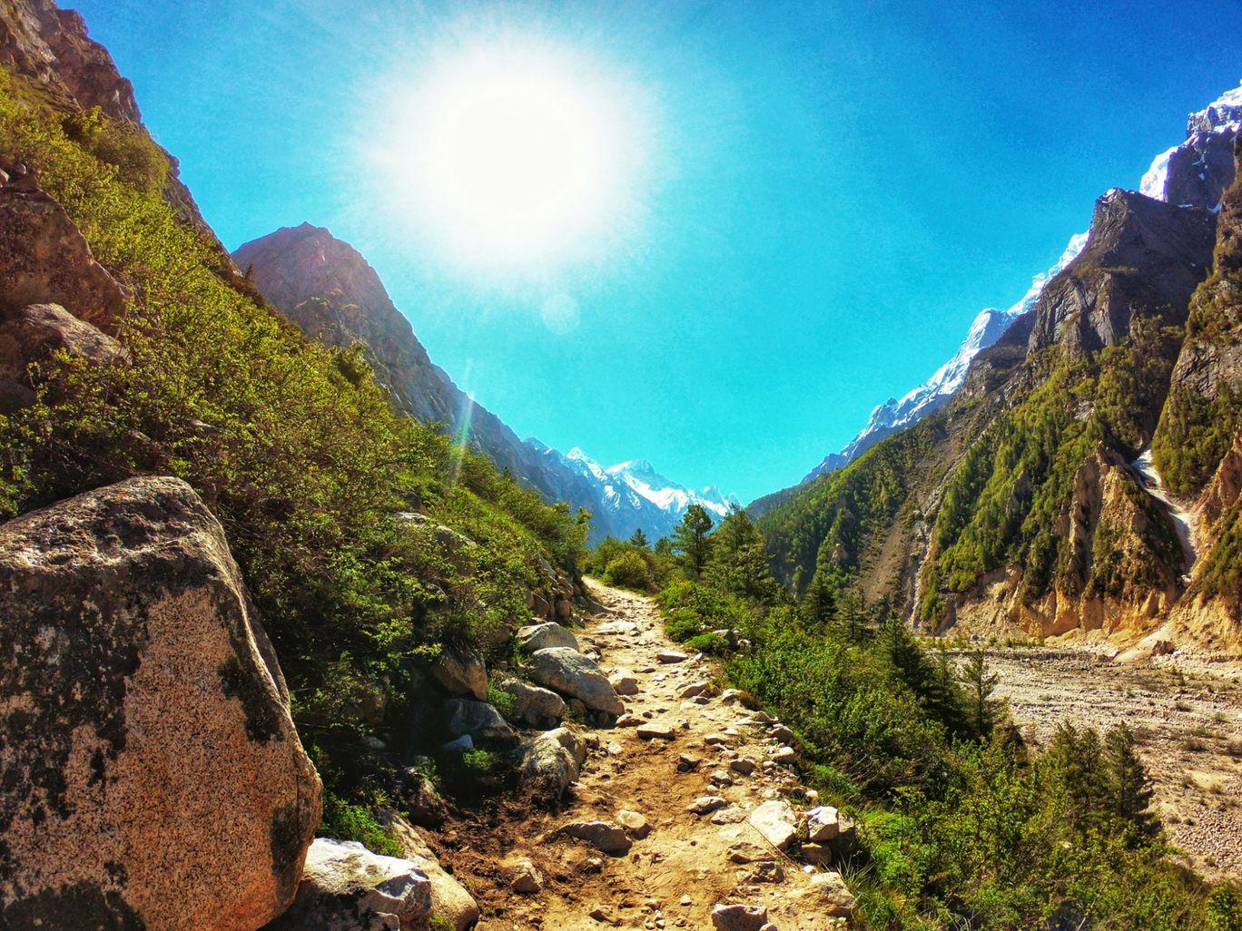 Photo of Gaumukh Tapovan trek By Mayank