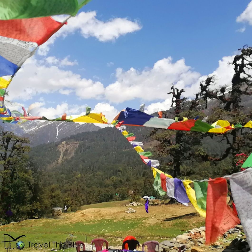 Photo of Chopta By Travel the Blue