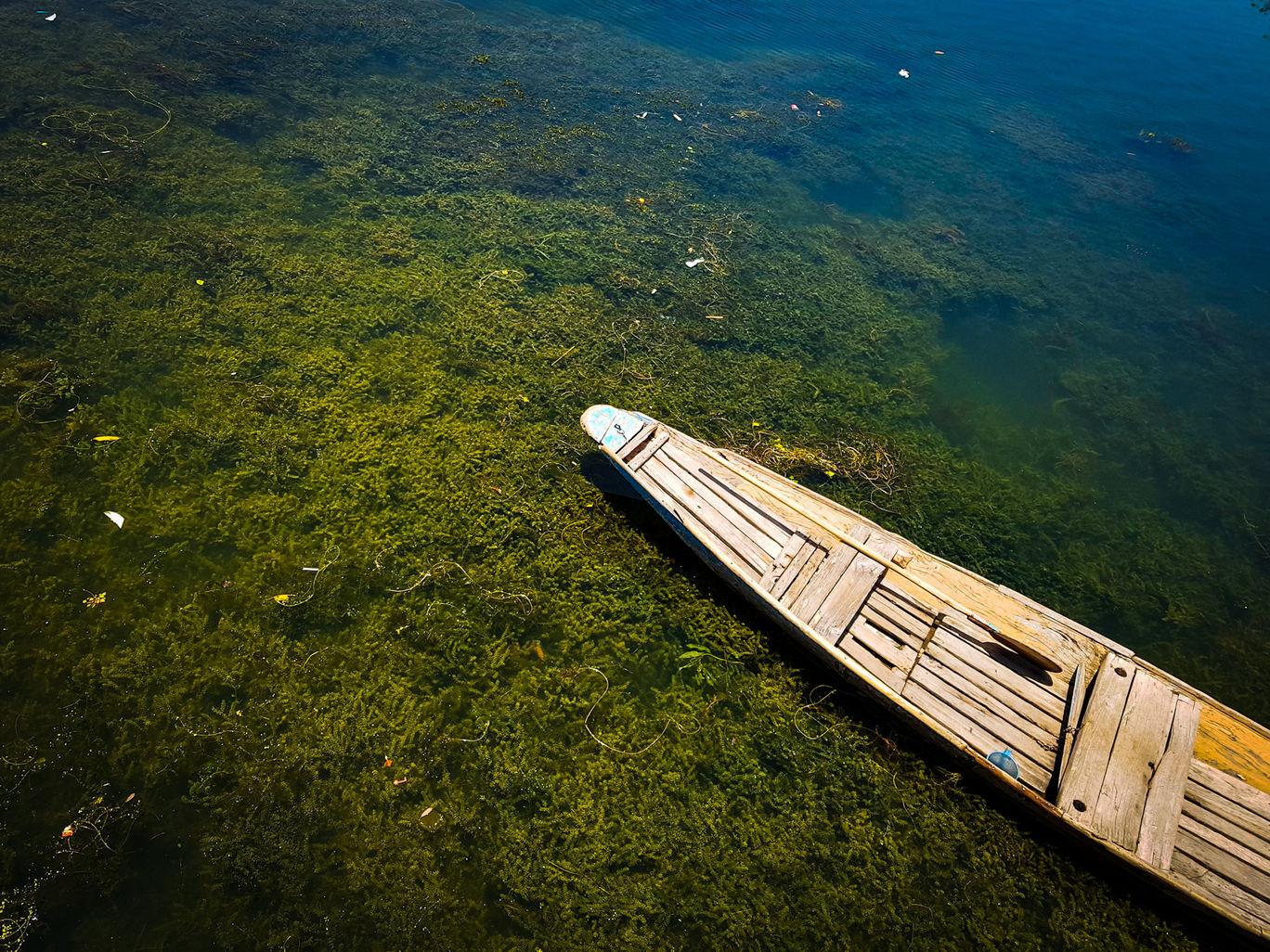 Photo of Dal Lake By Parthiban