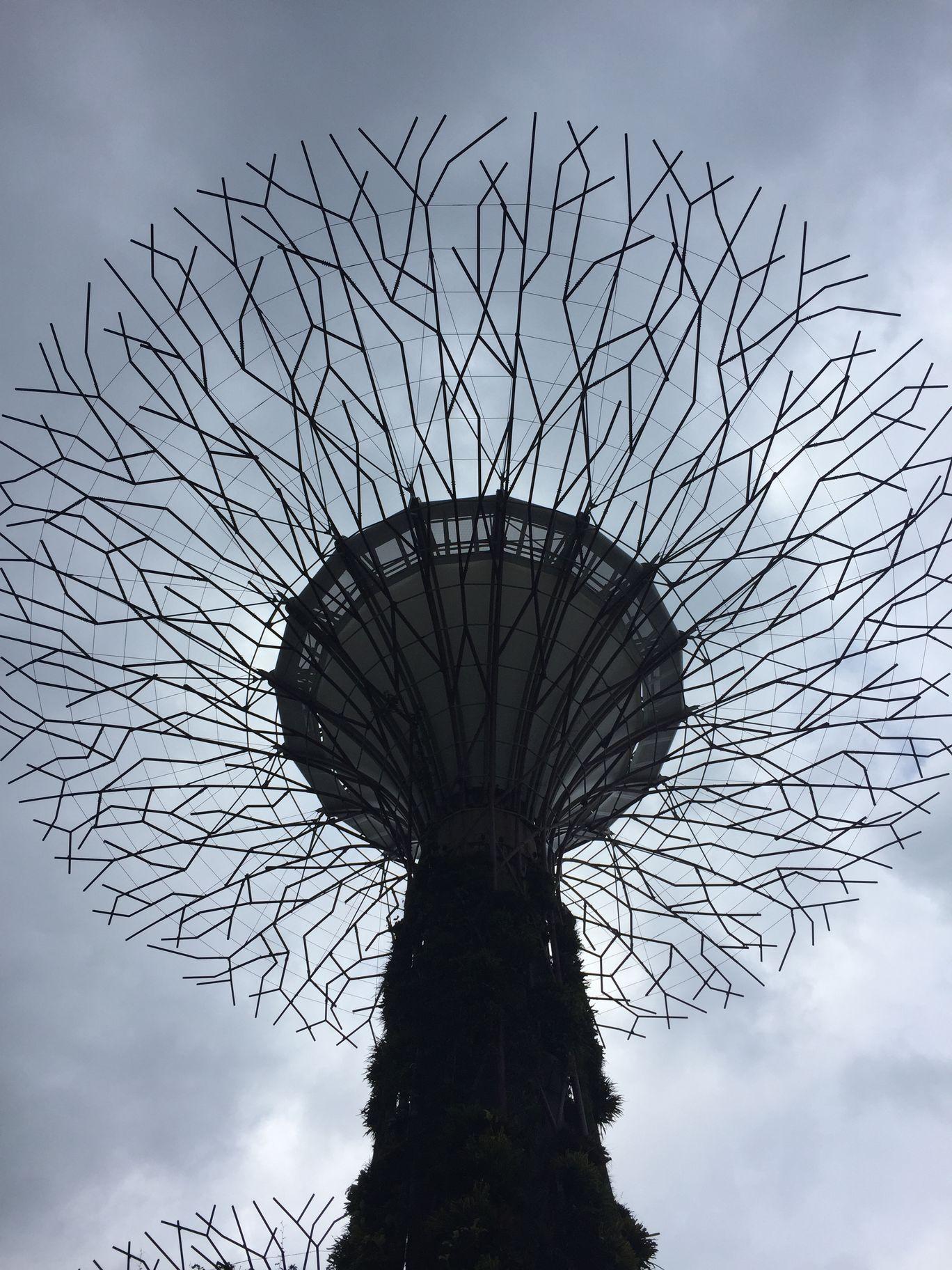 Photo of Singapore By Ruchi Shah