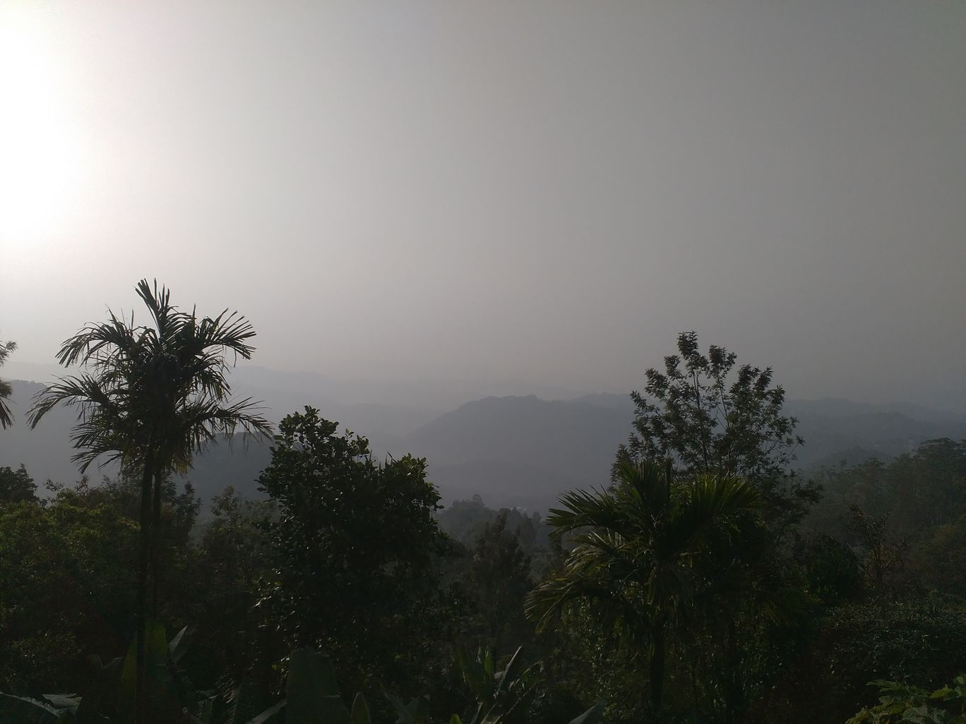 Photo of God's Own Country - Kerala By Amol Sonawane