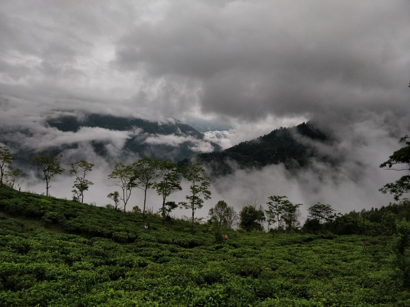Photo of Northeast Phase 2 - Clouds of Kalimpong By Mahesh Maddala