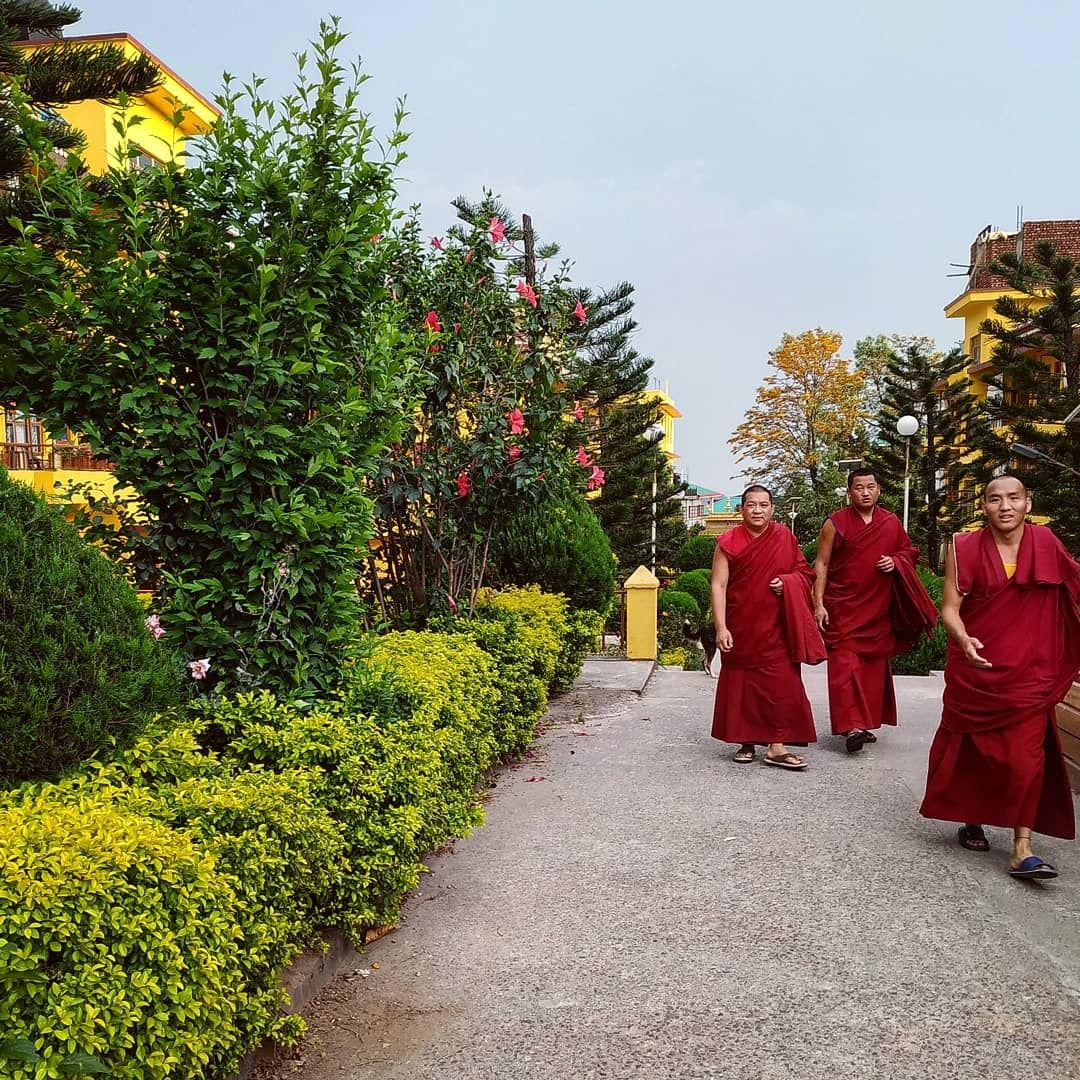 Photo of Gyuto Monastery By Siddharth Shankar