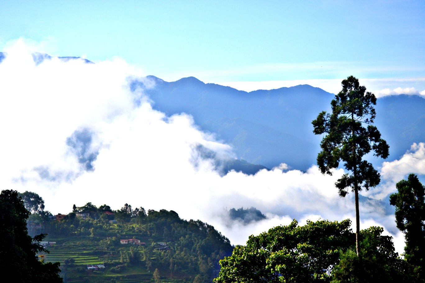 Photo of Sikkim By Rejani