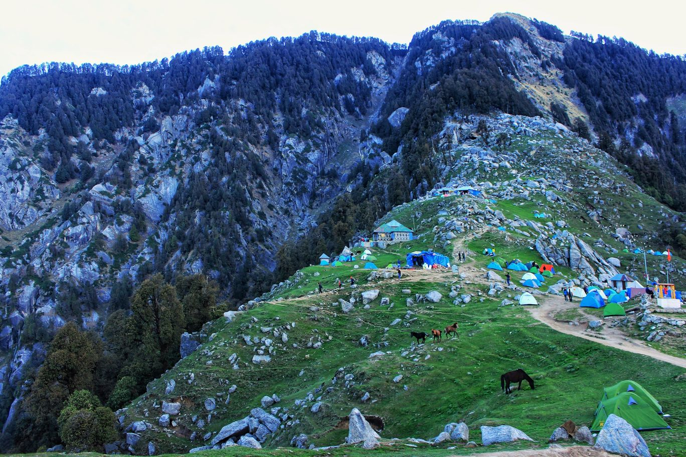 Photo of Triund Trek By Neha jain