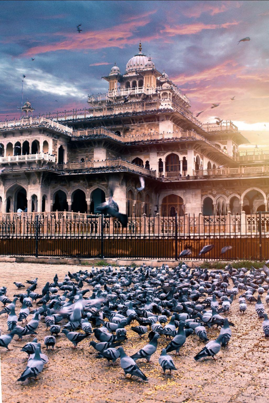 Photo of Albert Hall Museum By Mayank Dabhi