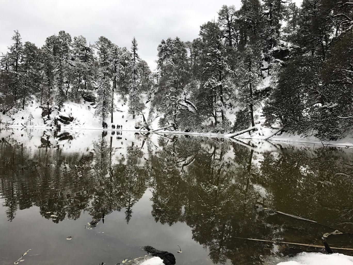 Photo of Brahmatal trek '17(march) By Divyansh