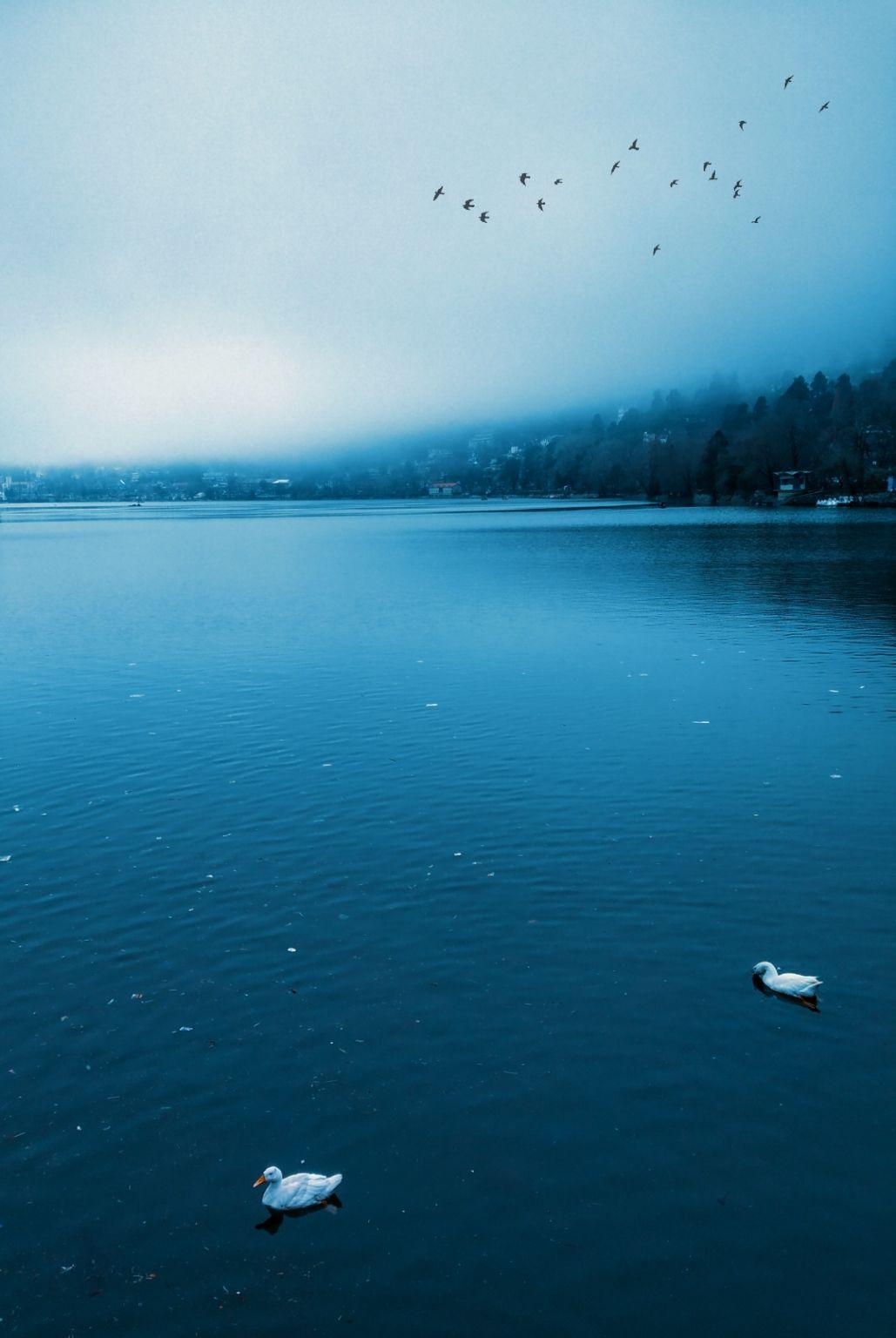 Photo of Nainital By tushaar