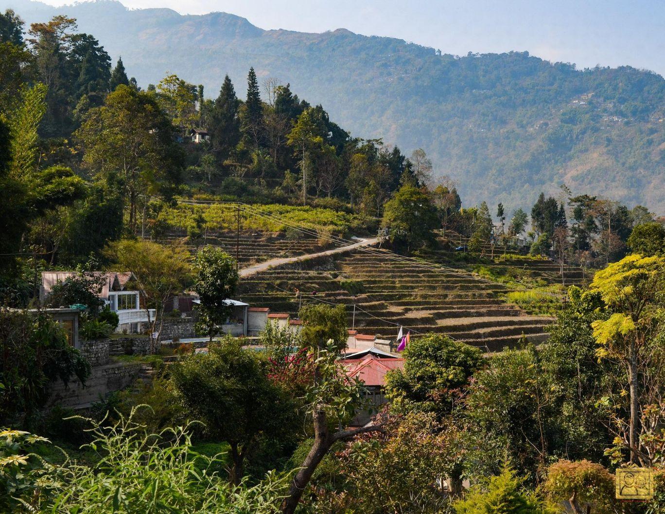 Photo of Darjeeling Blossom Ecotourism Complex - Bara Mangwa By Bongyatri - Sourav & Anindita