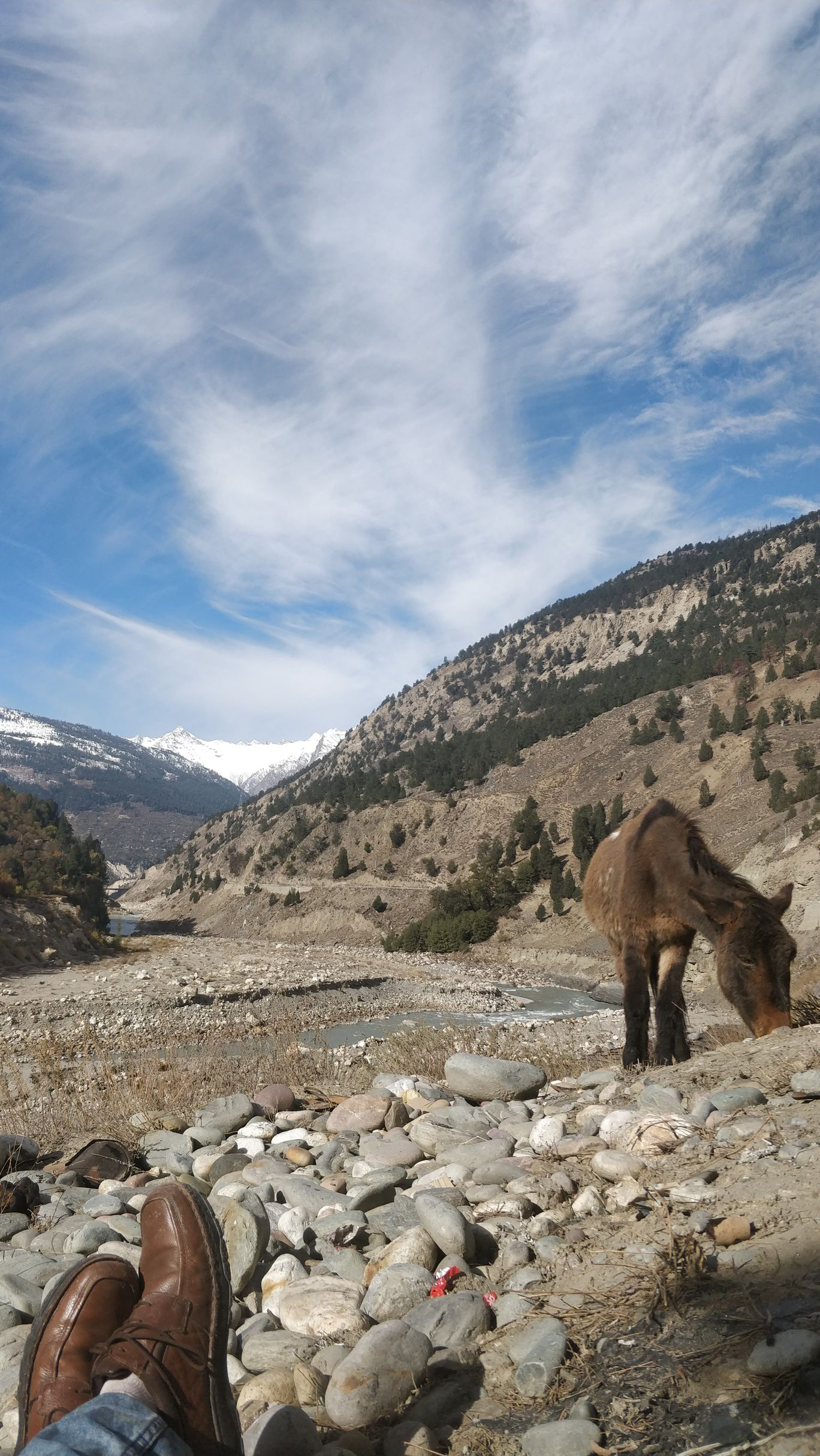 Photo of Spiti Valley By Jeet..